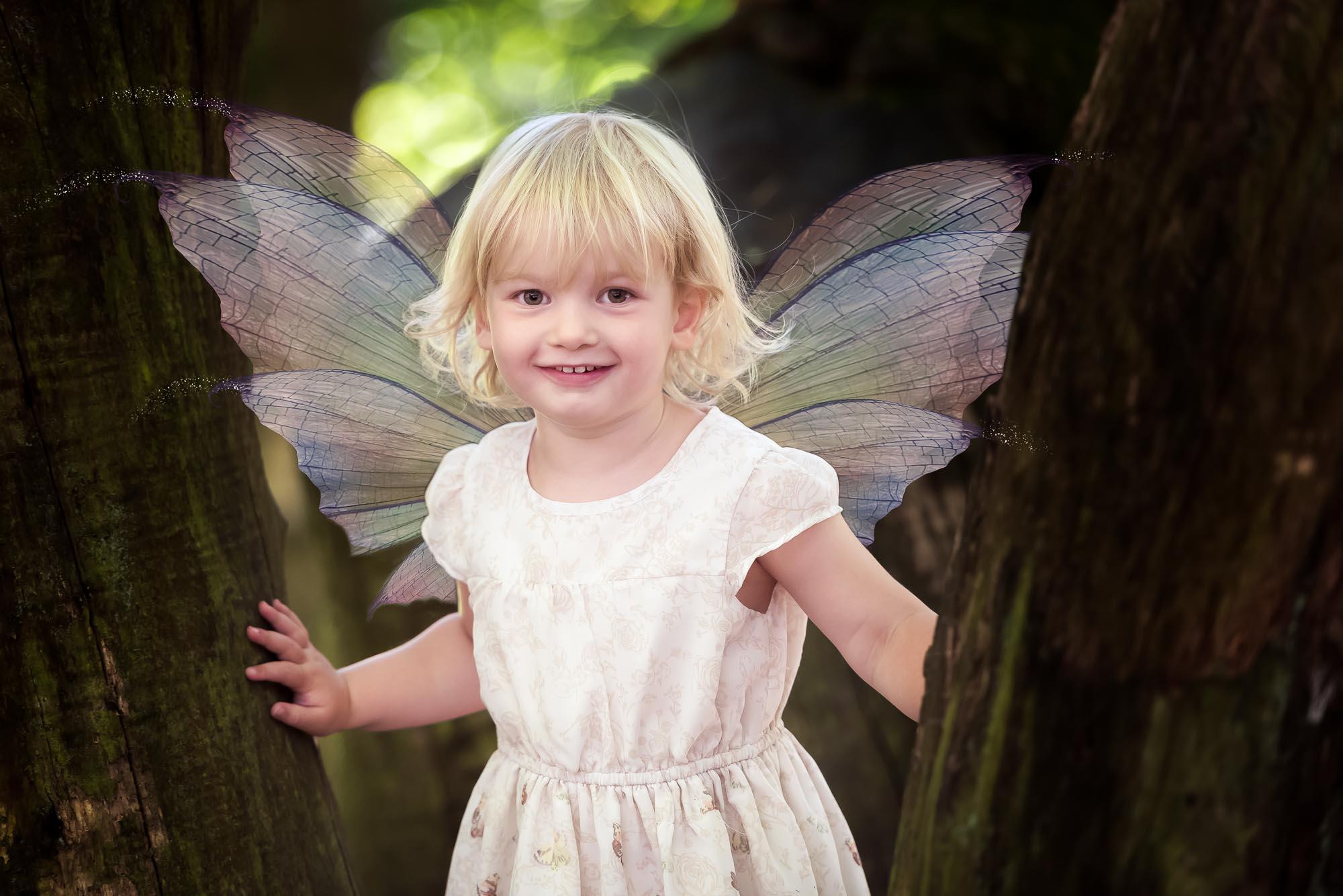 Fairy Photographs