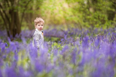 Northampton Bluebell Photographer