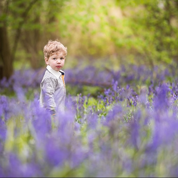 Bluebell photo shoot Northampton