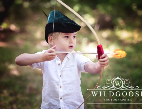 Robin Hood Mini Shoot