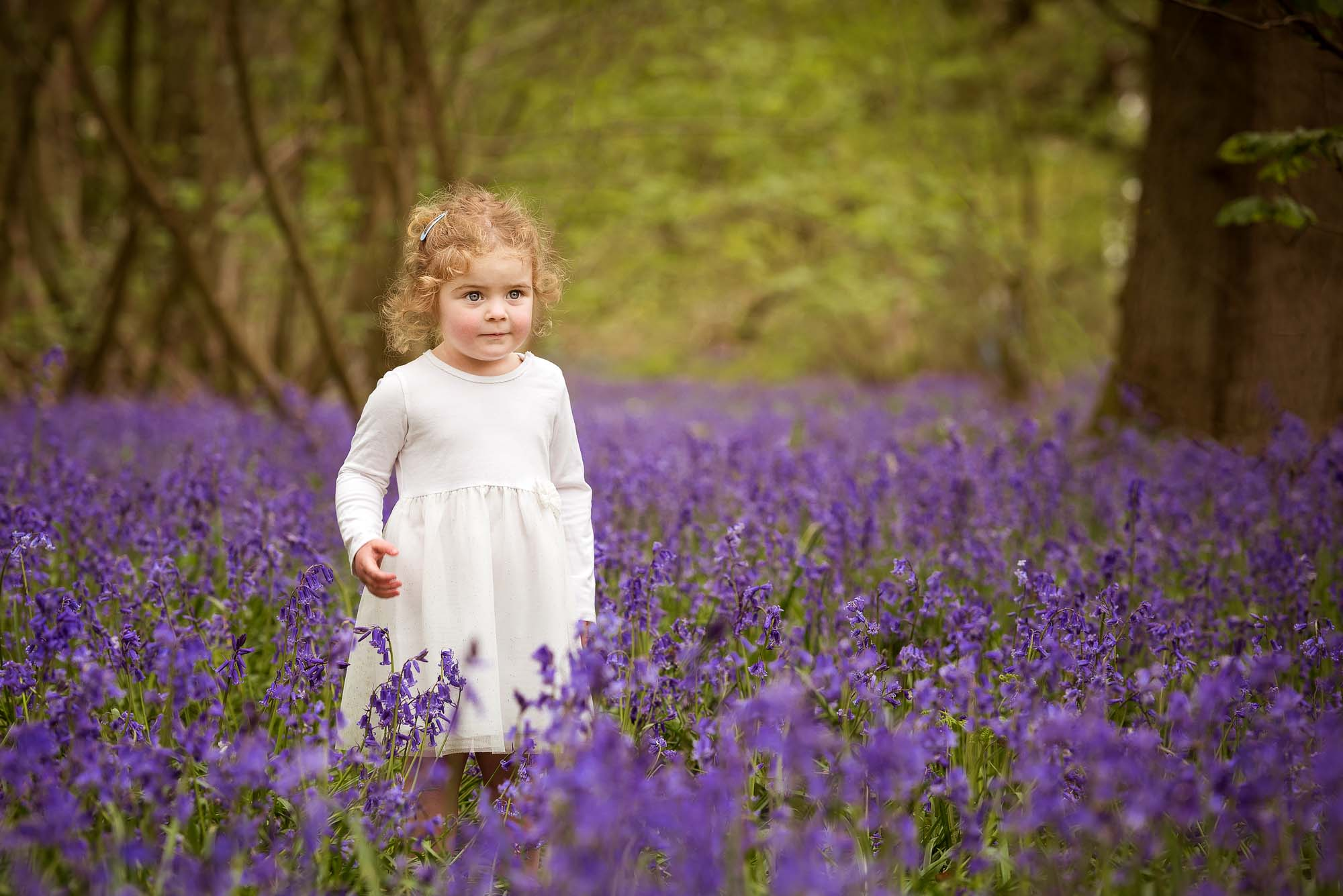 Bluebell photoshoot northampton