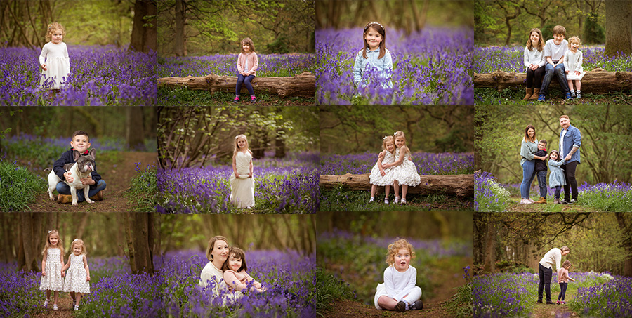 Bluebell photo shoot