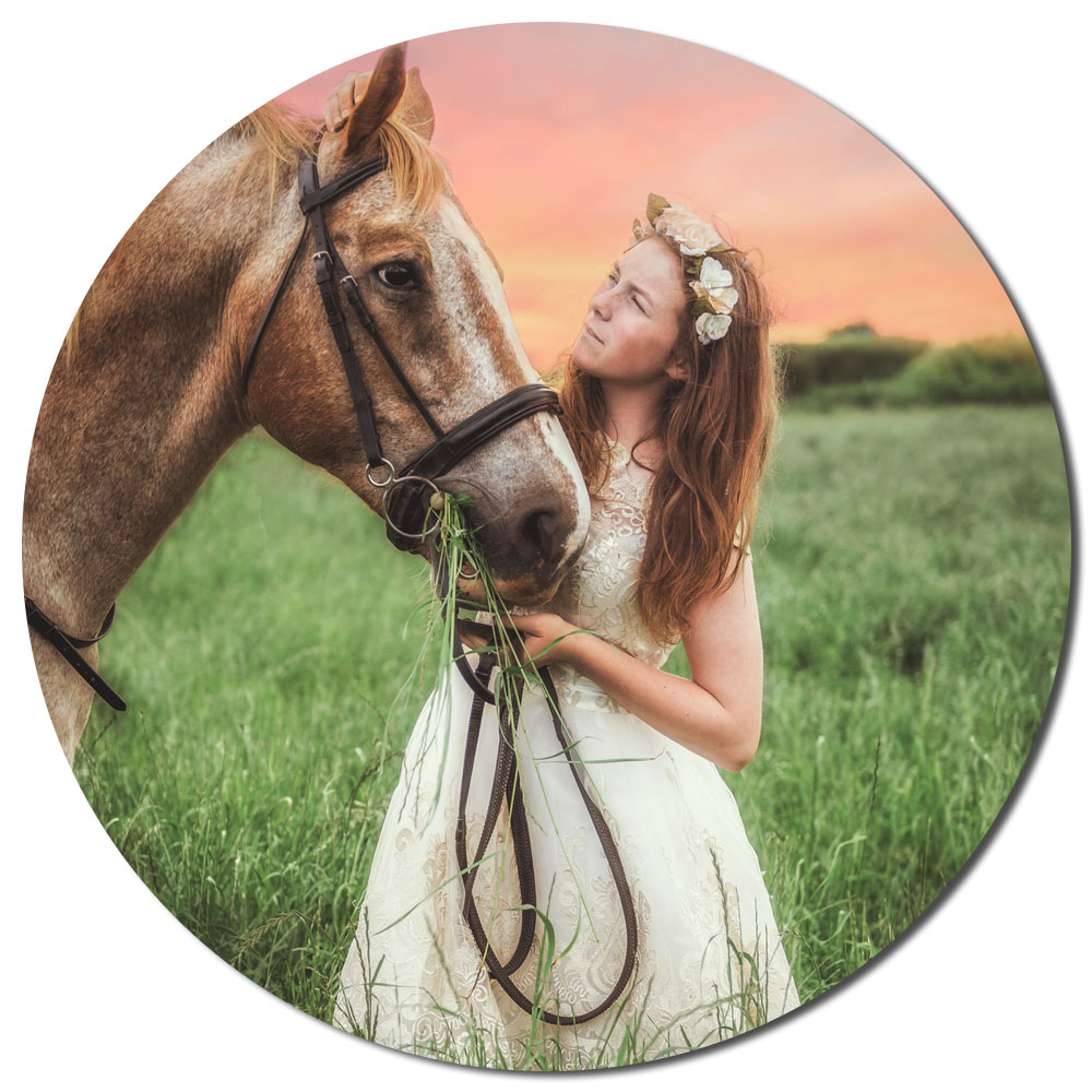 Pet & Equine Photography